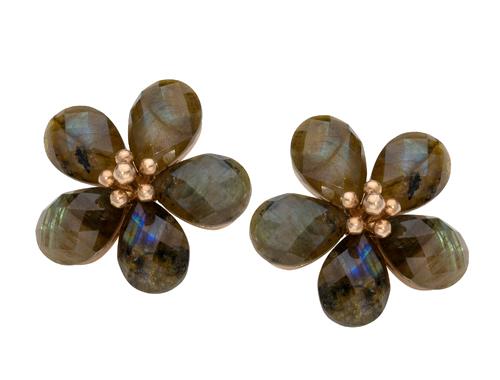 jeanne-laumier-niche-trial-flower-drops